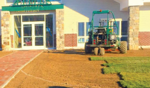 Commercial Sod Lawn Install